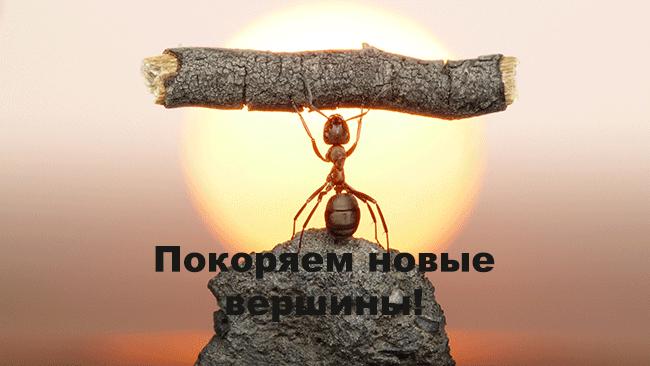 проп-трейдинг1
