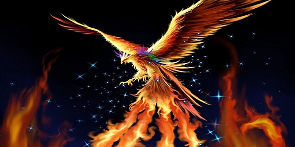 Советник Phoenix