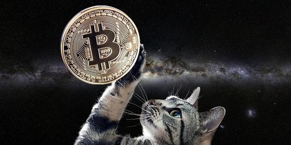 Развитие криптовалют